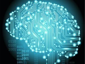brain-circuit